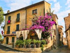 Для чего нужно посетить Прованс?